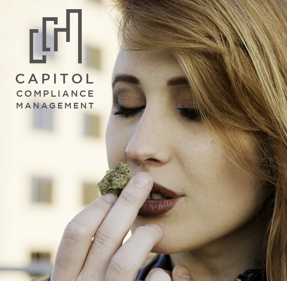 Capitol Compliance Management blog - Don't make these cannabis marketing mistakes
